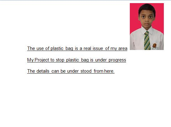 plastic should be banned essay