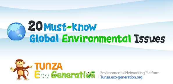 20 Must-know Global Environmental Issues