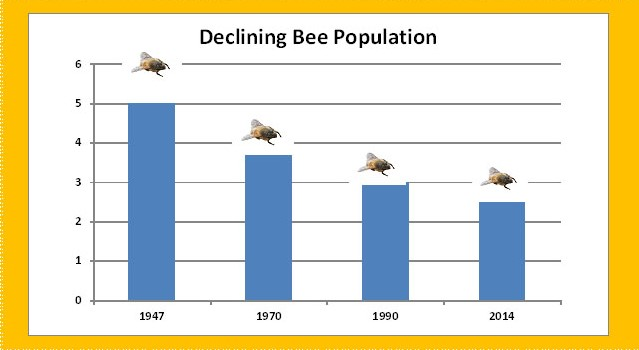 causes of bee population decline There are several causes for steady decline in the bee population: pesticides beekeepers are concerned about a connection between colony collapse disorder and neonicotinoids, or nicotine-based pesticides.