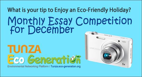 defining a generation essay