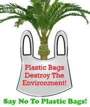 disadvantage of plastic bags essay Plastic containers are mainly used for food and storage and for home organization  the advantages & disadvantages of plastic containers by allison horky.