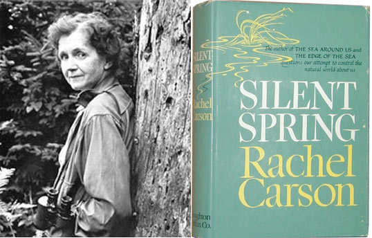 the greater power of idea in rachel carsons silent spring Ideas are needed--better yet a whole world view--and many environmental ideas first crystallized in 1962 that year saw the publication of rachel carson's silent spring, first in serial form in the new yorker and then as a houghton mifflin best seller this exhaustively researched, carefully reasoned, and beautifully written.