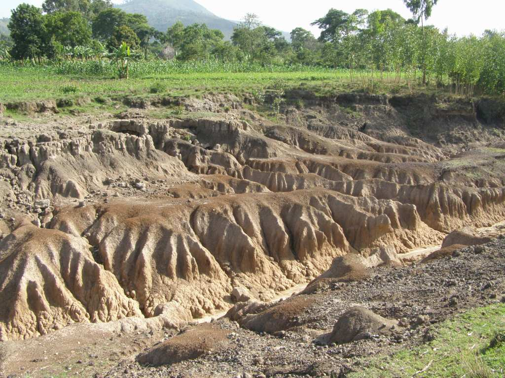 essay for students on soil erosion to