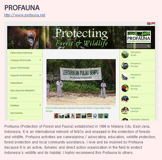 Profauna (Protection of Forest and Fauna) established in 1994 in Malang City, East Java, Indonesia. It is an international network of NGOs and engaged in the protection of forests and wildlife. Profauna activities are campaigning / advocating, education, wildlife protection, forest protection and local community assistance. I love and be inspired by Profauna because It is an active, dynamic and direct action organization in the field to protect Indonesia
