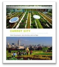carrot city_cover