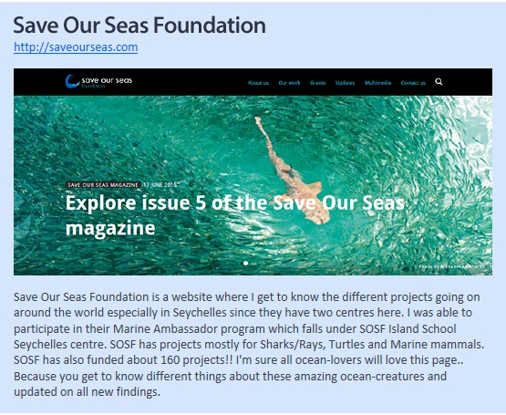 Saves Our Seas Foundation