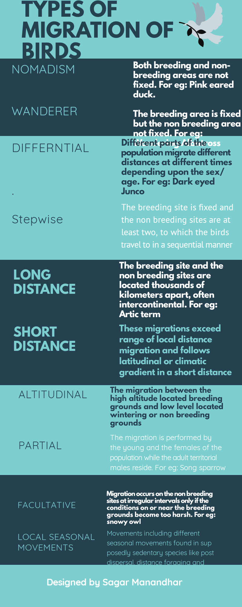 Infographics describing the types of migration performed by birds