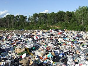 soil pollution in bangladesh