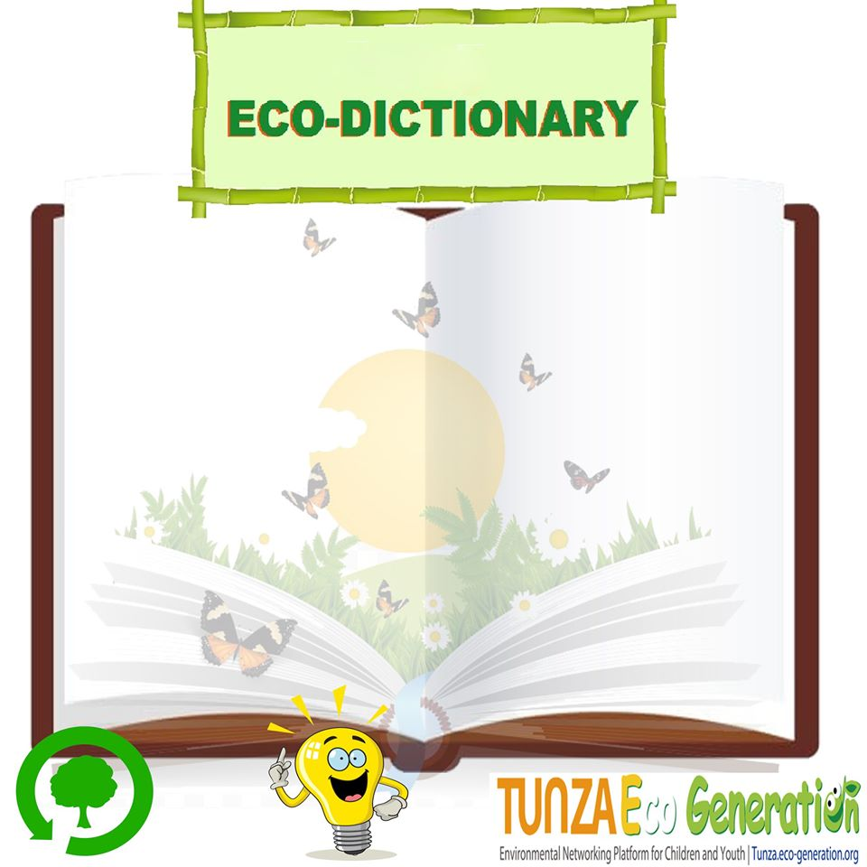 New Series on Eco Dictionary (Campaign) (Free Report)