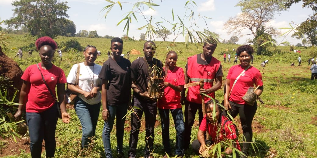 Tree Planting exercise by Chapter's team