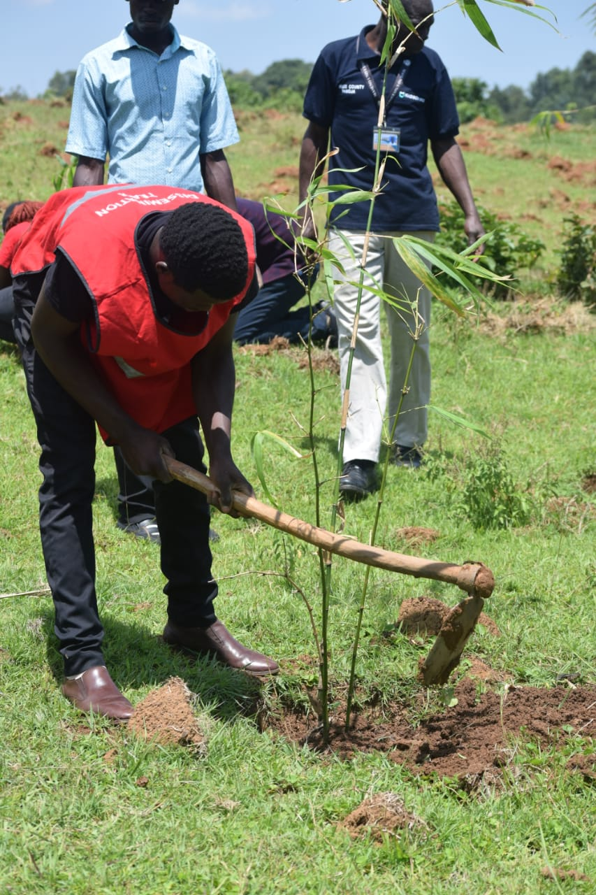 Tree Planting Exercise on 6th September, 2019