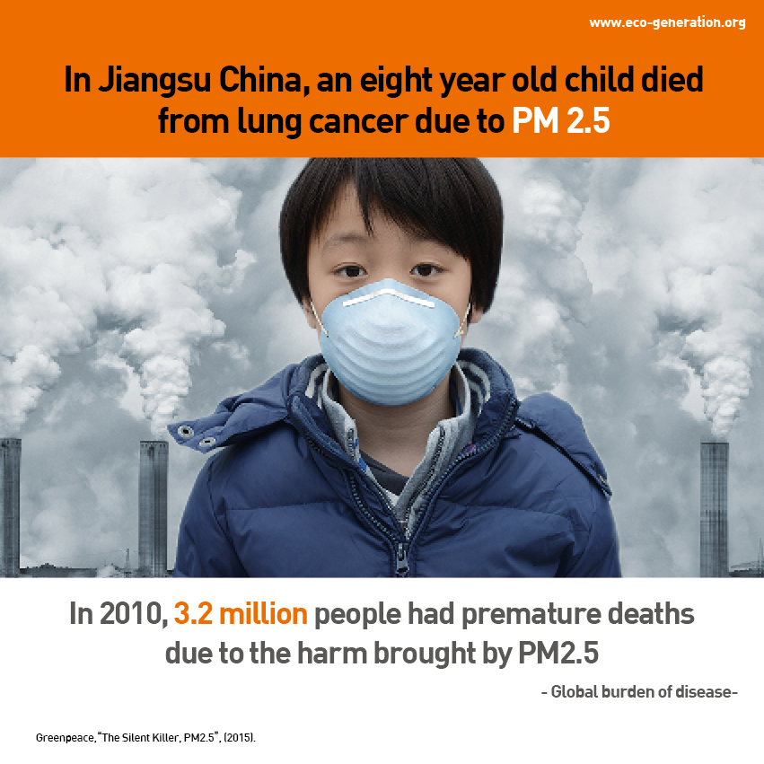 PM 2.5 invisible but deadly particles - in 2010, 3.2million people had premature deaths due to the harm brought by PM2.5
