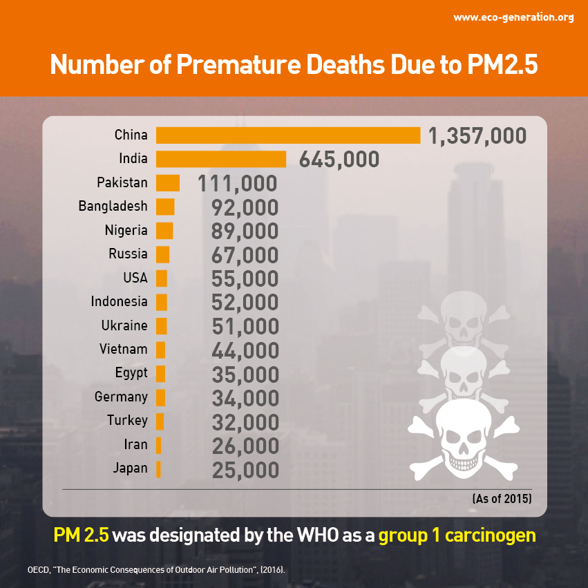 PM 2.5 invisible but deadly particles - number of premature deaths due to PM2.5