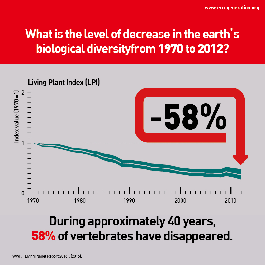 During approximately 40 years, 58% of vertebrates have disappeared.