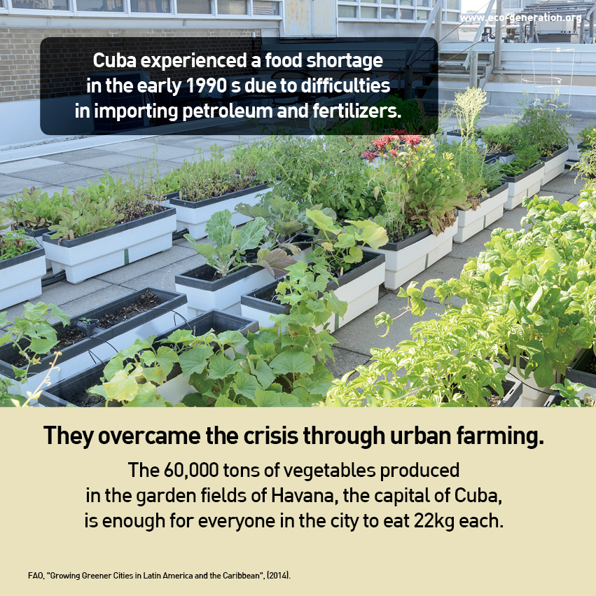 Cuba experienced a food shortage in the early 1990s due to difficulties in importing petroleum and fertilizers.  They overcome the crirsis through urban farming.