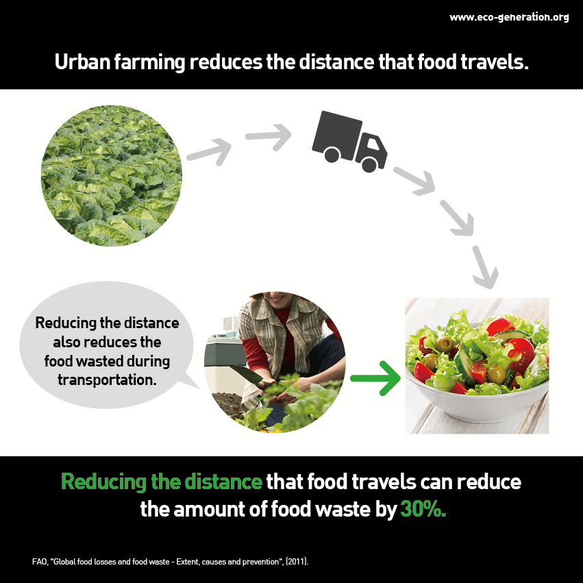 Urban farming reduces the distance that food travels. Reducing the distance that food travels can reduce the amount of food waste by 30%.