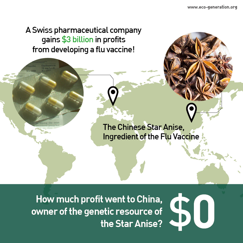 A Swiss pharmaceutical company gains $3 billion in profits from developing a flu vaccine! How much profit went to China, owner of the genetic resource of the Star Anise? $0
