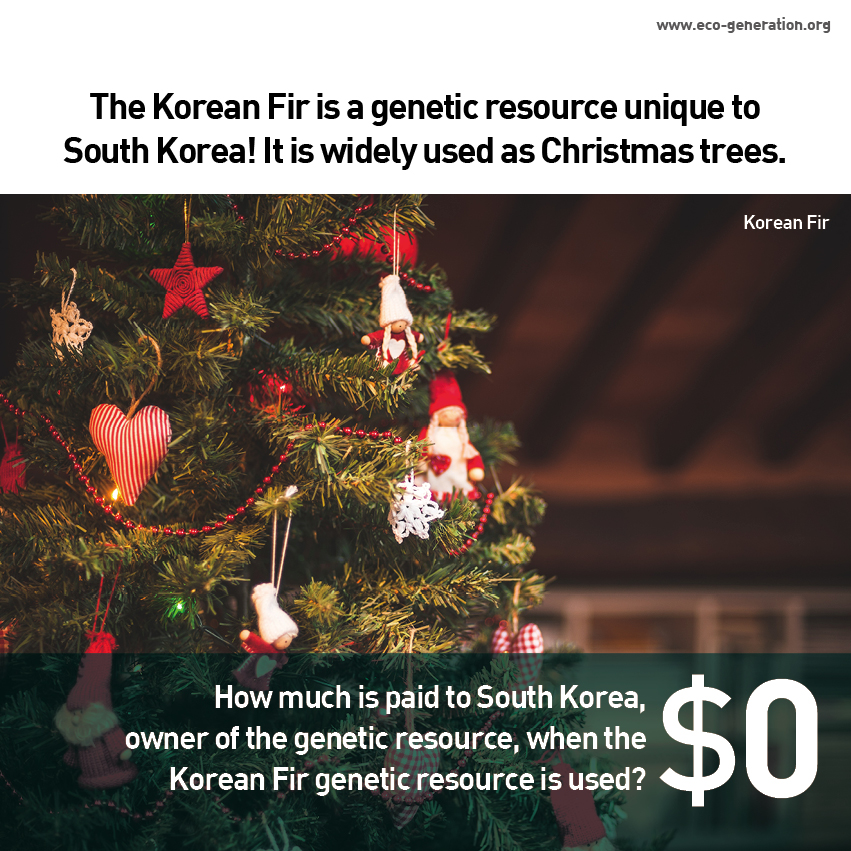 The Korean Fir is genetic resource unique to South korea. How much is paid to the owner of the genetic resource, when the genetic resource is used? $0