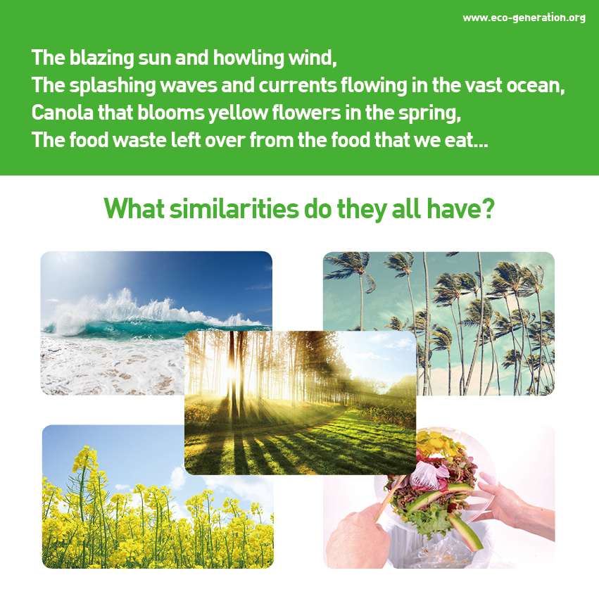 The blazing sun and howling wind, splashing waves and currents flowing in the vast ocean, canola that blooms yellow flowers in the spring, food waste left over from the food thatn we eat...what similarities do they all have?