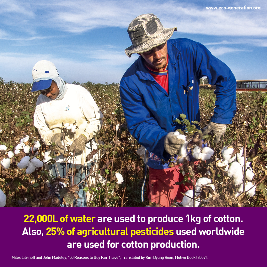 22,000L of water are used to produce 1kg of cotton. Also, 25% of agricultural pesticides used worldwide are used for cotton production.