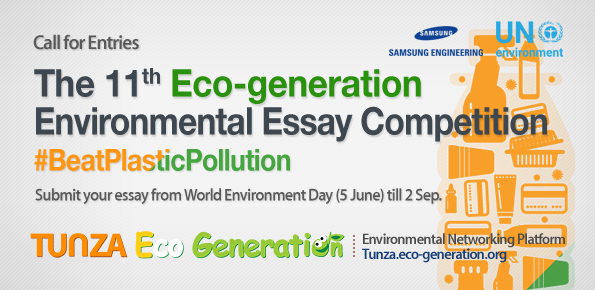 environment and us essay