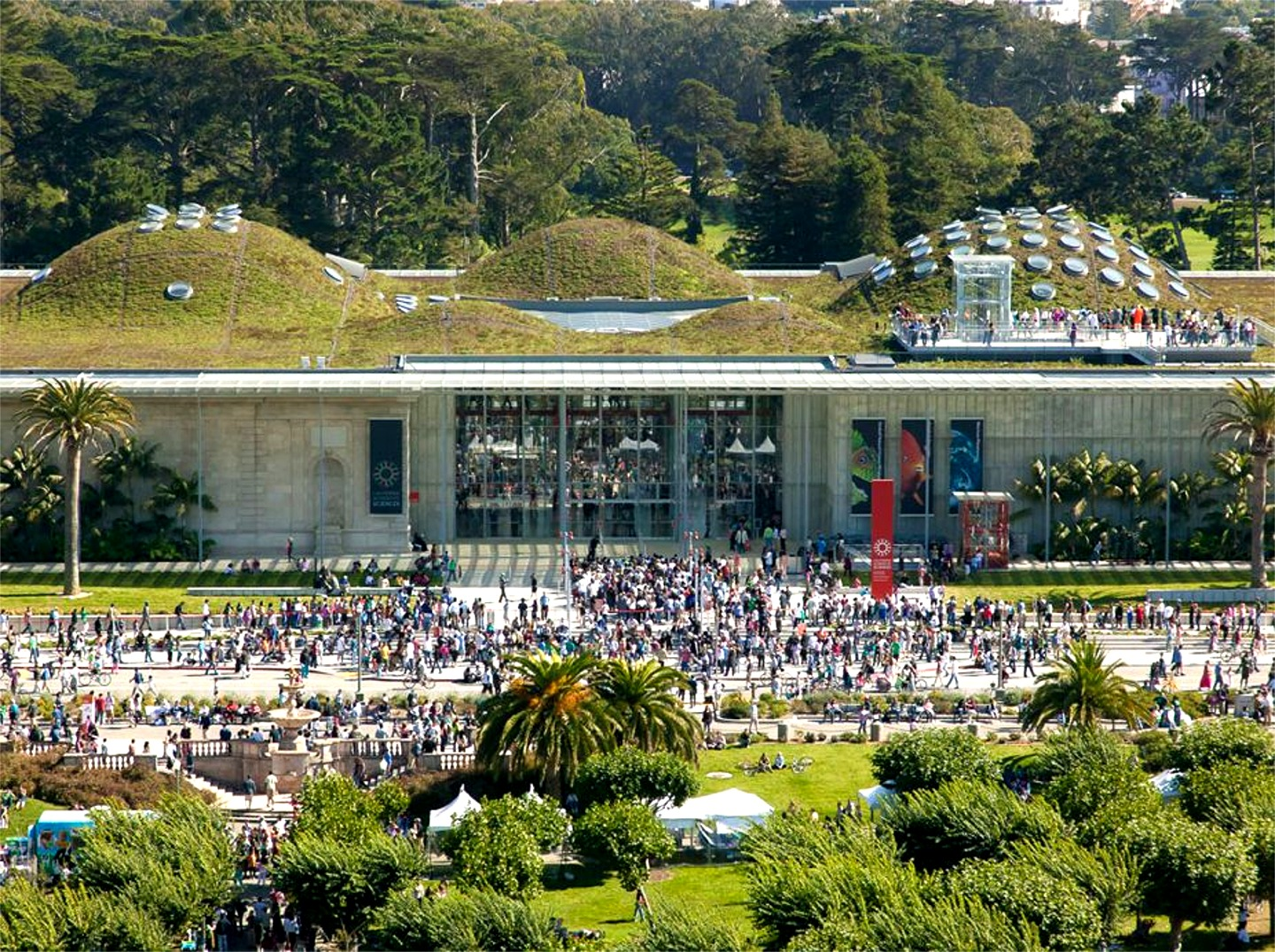 [thematic report] The Green Architecture of the California Academy of Sciences