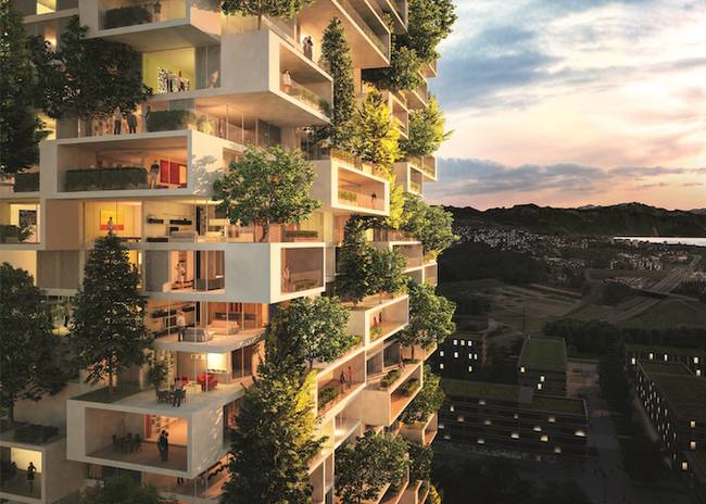 (Thematic Report) Green Architecture and the Environment