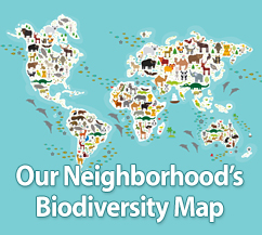 Our Neighborhood's Biodiversity Map